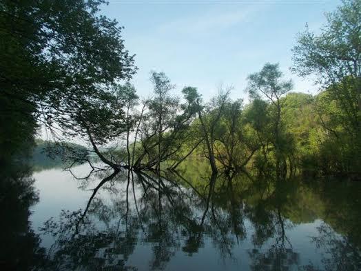Pig Tail Area Launch – Triadelphia Reservoir